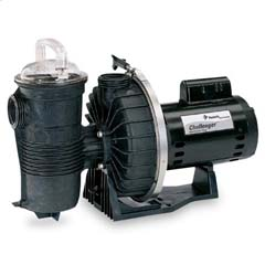 Pentair Challenger Swimming Pool  Pump Pakistan
